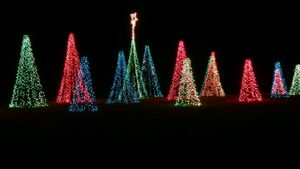 Chatham Light Up the Park