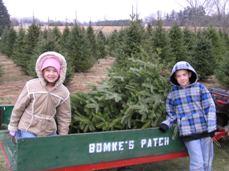 Jake Laura Christmas tree[1]