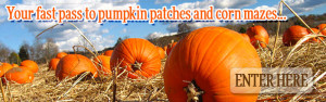 rotator-moms-pumpkins2-