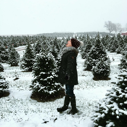Country Pines Christmas Tree Farms: Springfield Moms, Dads, Grandparents FREE Family Resources